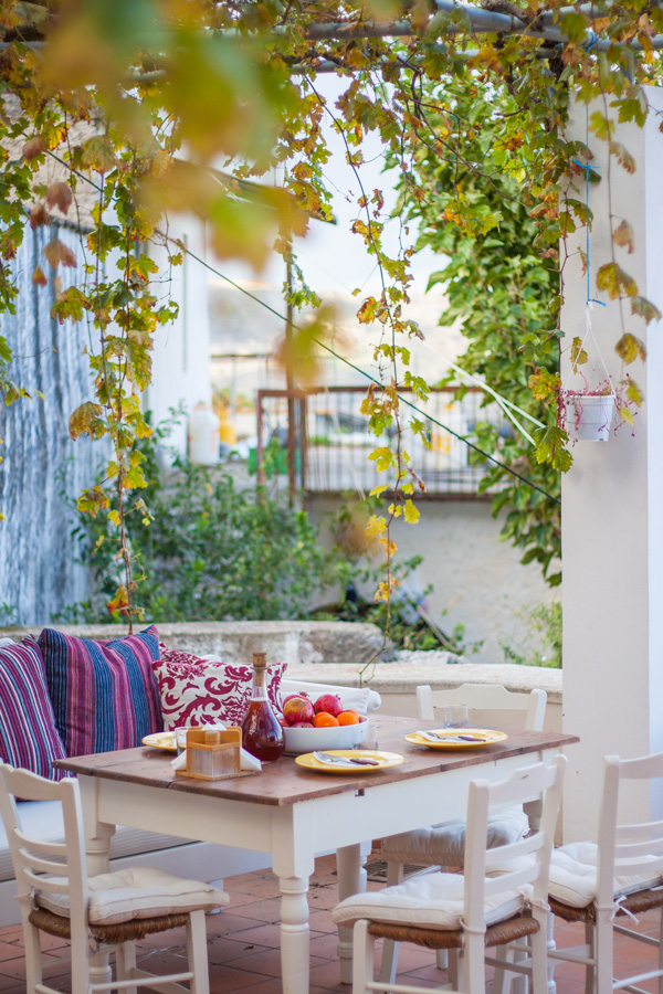 Outdoor - Enjoy your meal under a shady bower of grape trees!