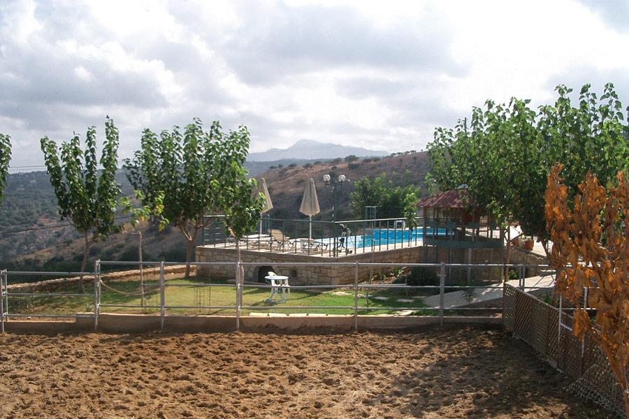 Outdoor - Our farm and garden area